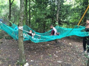 Système b - école dans les arbres